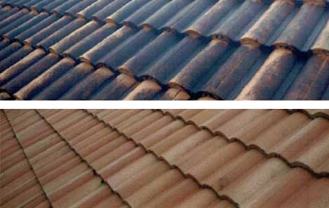 Roof before and after roof cleaning.