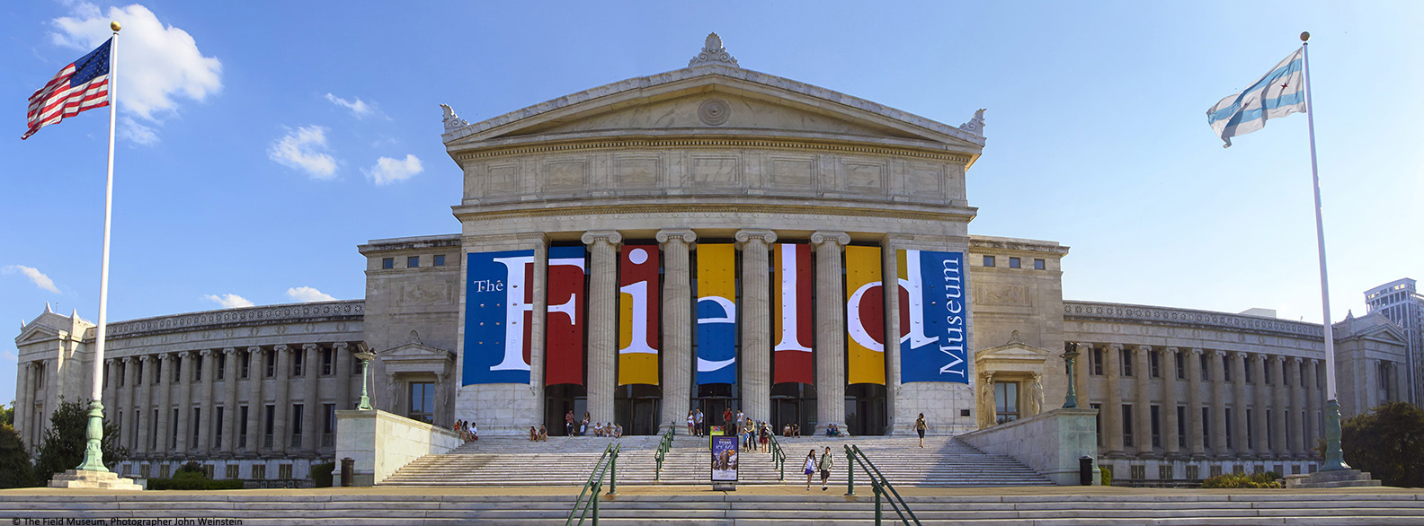 image of the front of the Field Museum building with colorful banners that have letters on them between the tall pillars the spell FIELD