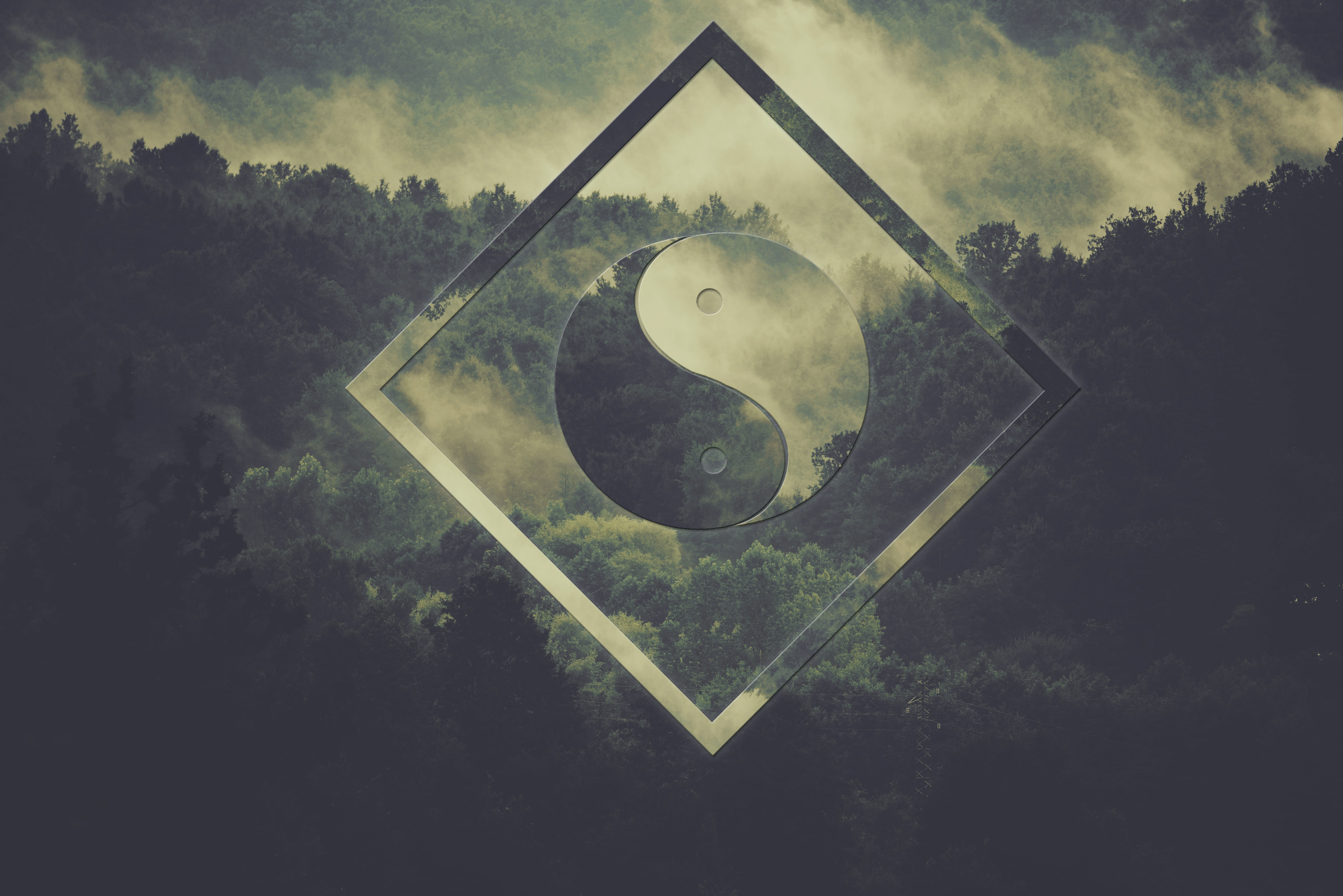 Polyscape - One With the Forrest - Yin and Yang