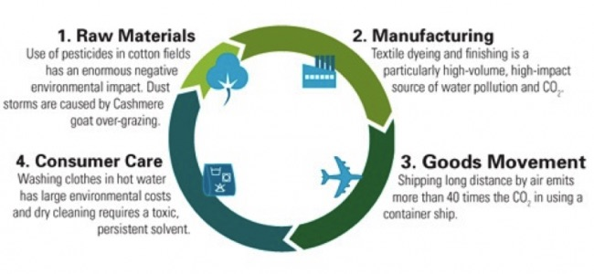 Natural Resources Defense Council Lifecycle