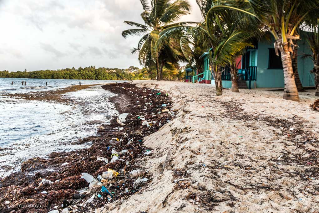 Belize beach covered in trash floating in the ocean.