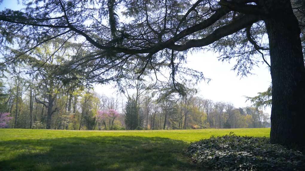 Stroll the beautiful Reynolda gardens.