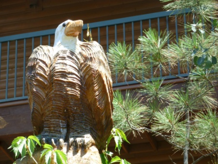 Ruidoso River Resort Photo Gallery