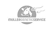 Müller Genetic Service