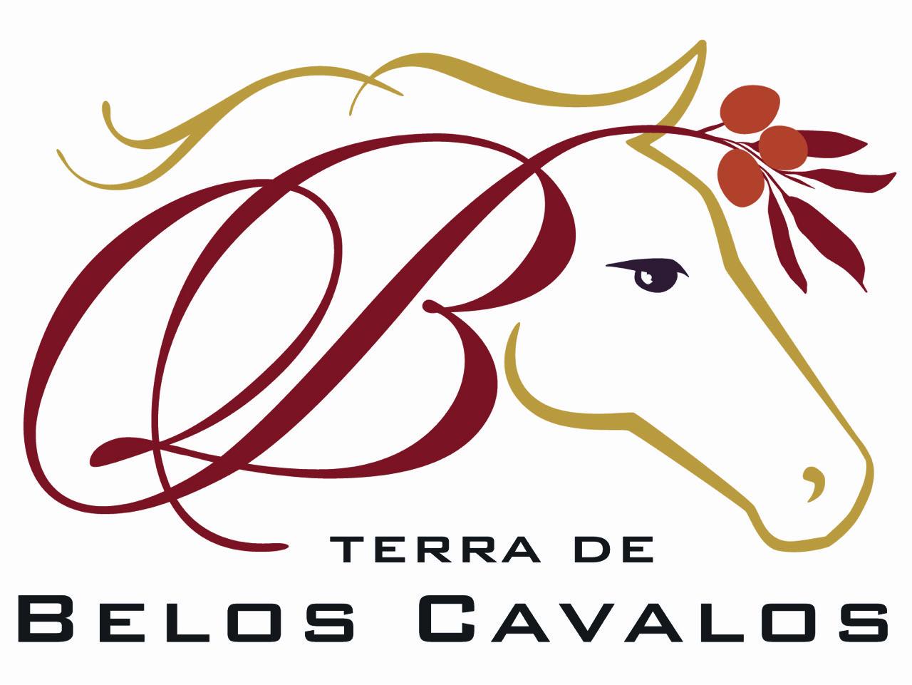 Belos Cavalos Logo