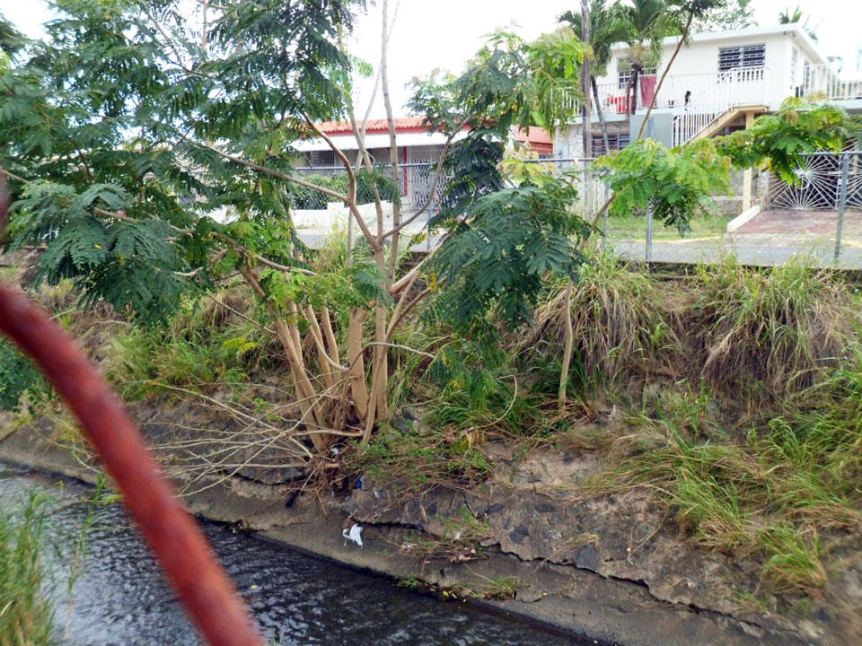 La quebrada de Country Club, Carolina y San Juan, Puerto Rico.