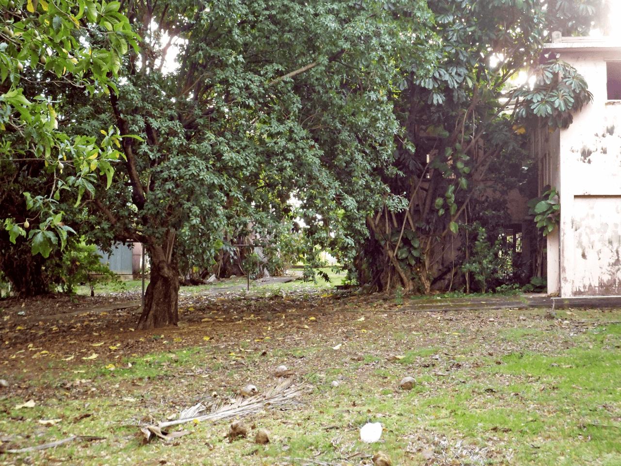 Histórica Casa Rosa de la Avenida Monserrate, Carolina, Puerto Rico.