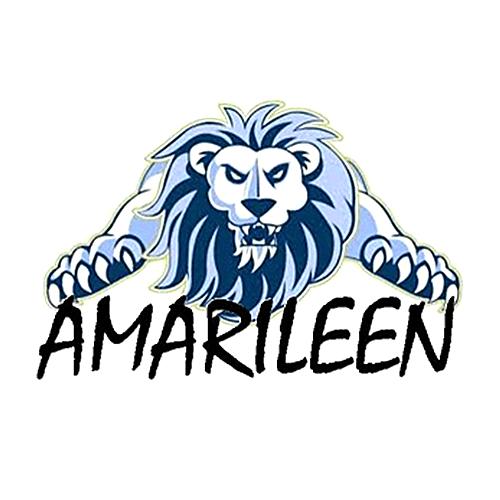 Colegio Amarileen (preescolar)