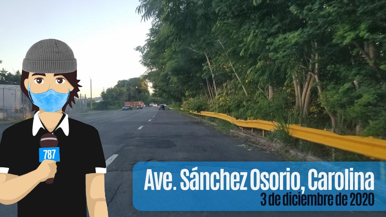 Image may contain: outdoor, text that says '787 Ave. Sánchez Osorio, Carolina dediciembrede2 2020'