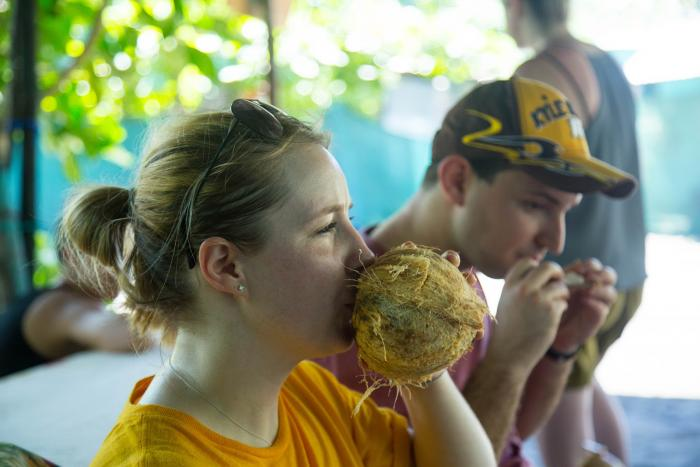 blog-How-We-Support-Sustainable-Tourism-in-Costa-Rica-coconut.jpg