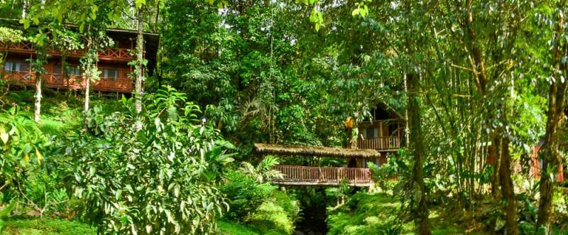 blog-Our-Most-Heart-Pumping-Trip-Yet-Costa-Rica-Adrenaline-views