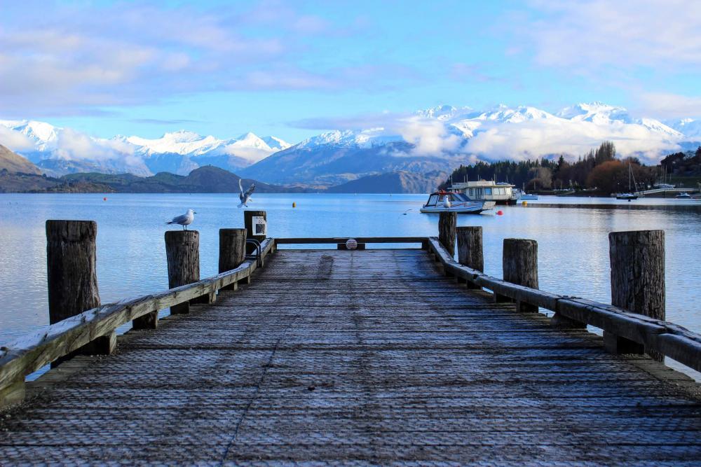 new-zealand-dock