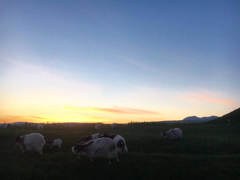 under30experiences-sunset-iceland-trips