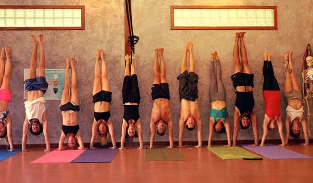 Yoga class full of students all practicing handstand