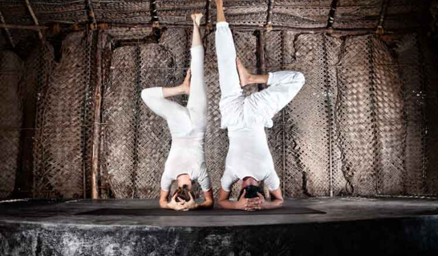 A man and woman practicing headstand next to each other against a brown backdrop
