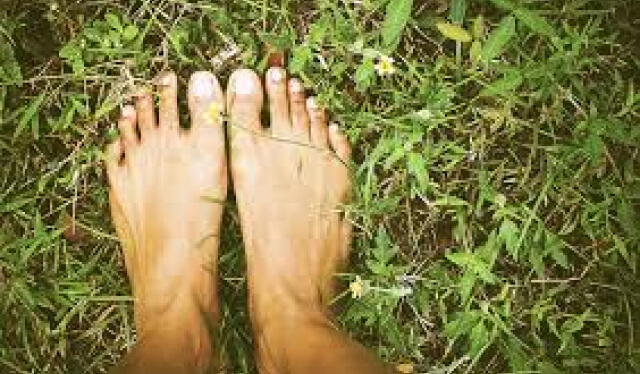 Person's feet in the grass