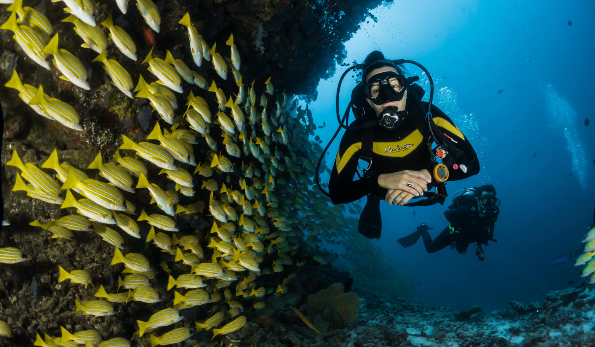 Woman and man scuba diving in blue water surrounded by yellow fish