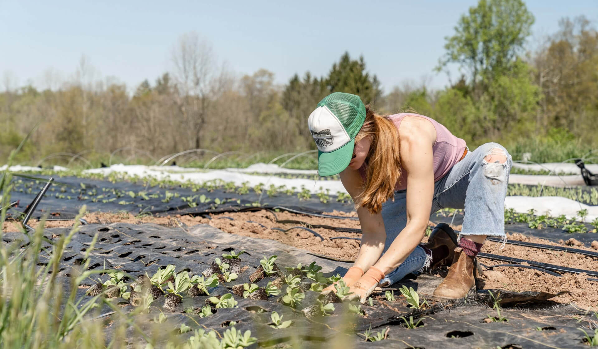 Girl with ripped jeans and a baseball cap kneeling down gardening on a farm