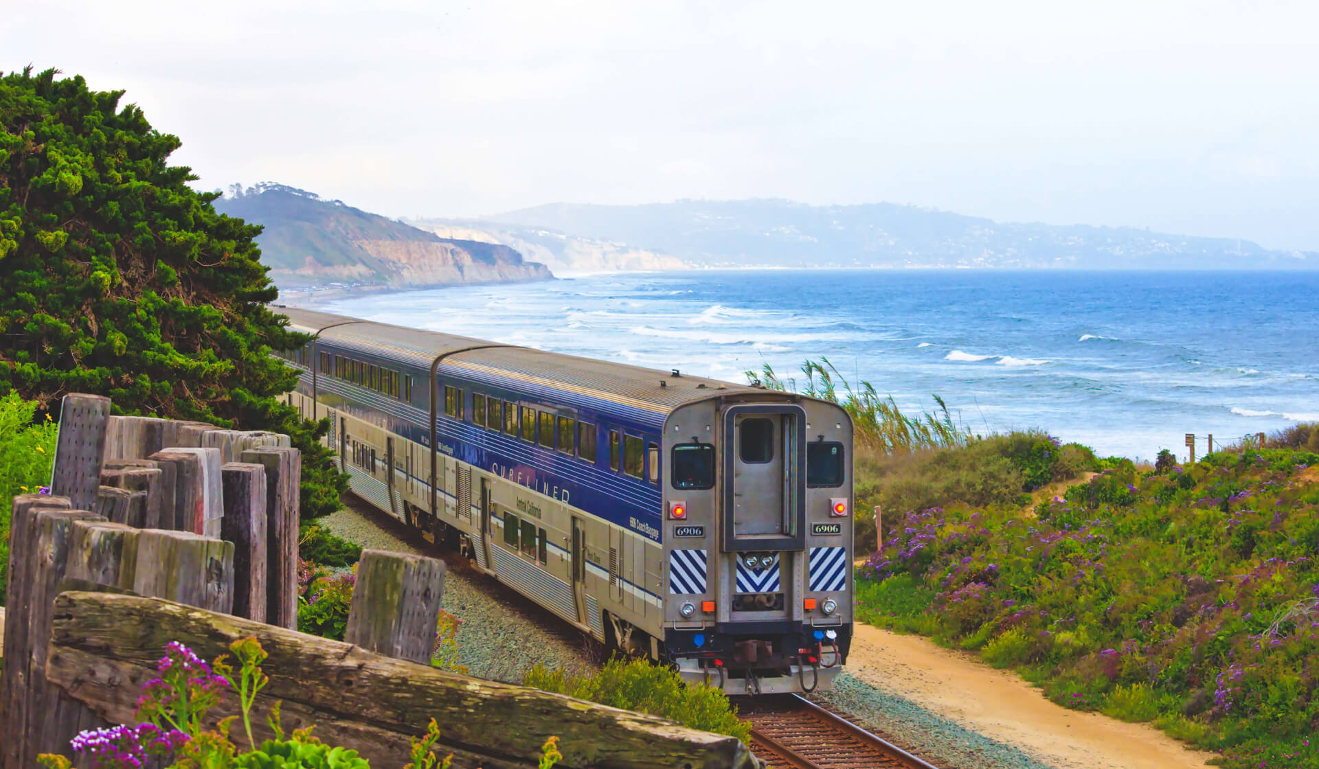 Train passing a beautiful blue coastline, green grass, and purple flowers