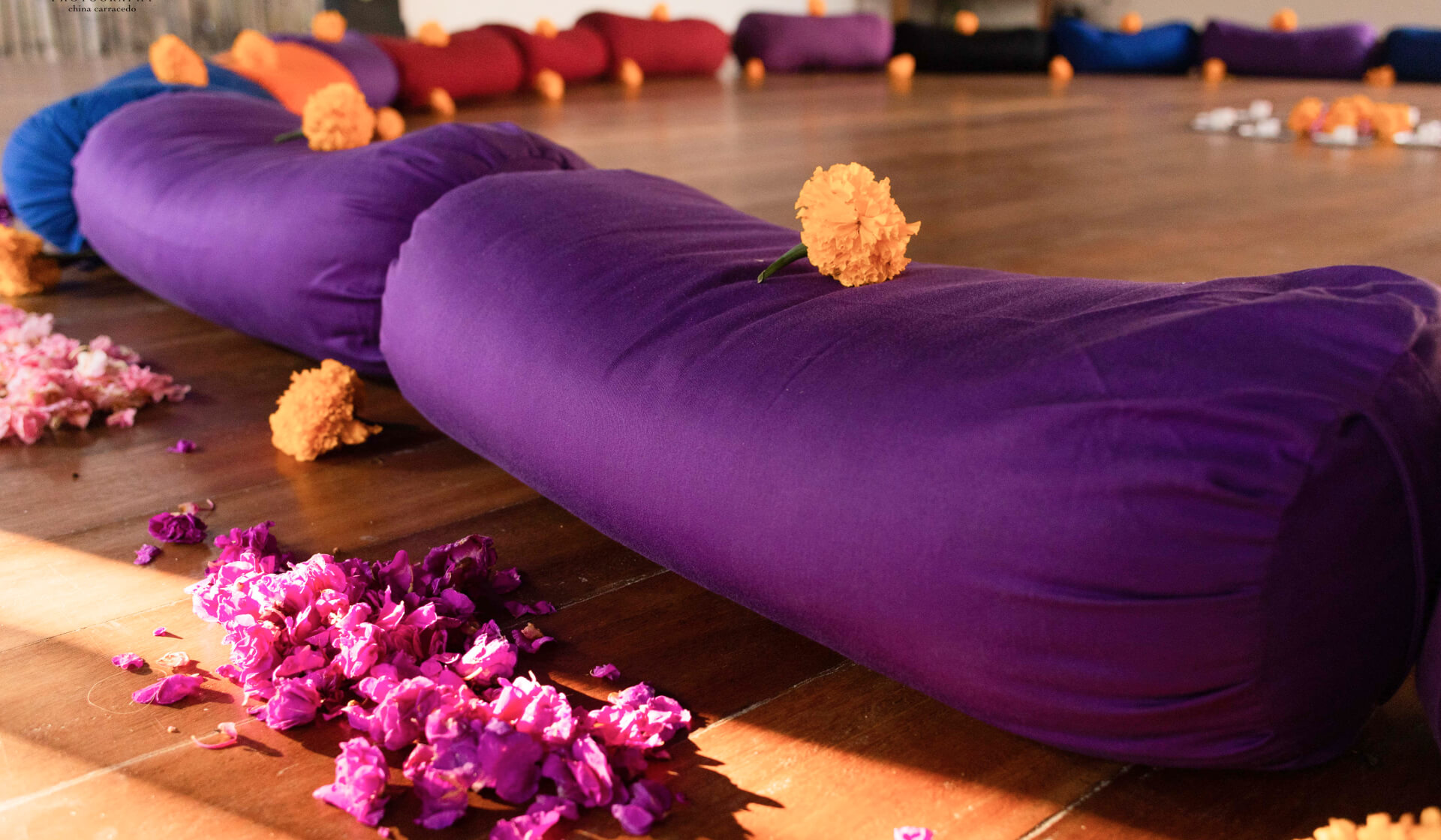 Close up of purple, red, and blue yoga bolsters arranged in a circle covered with yellow flowers