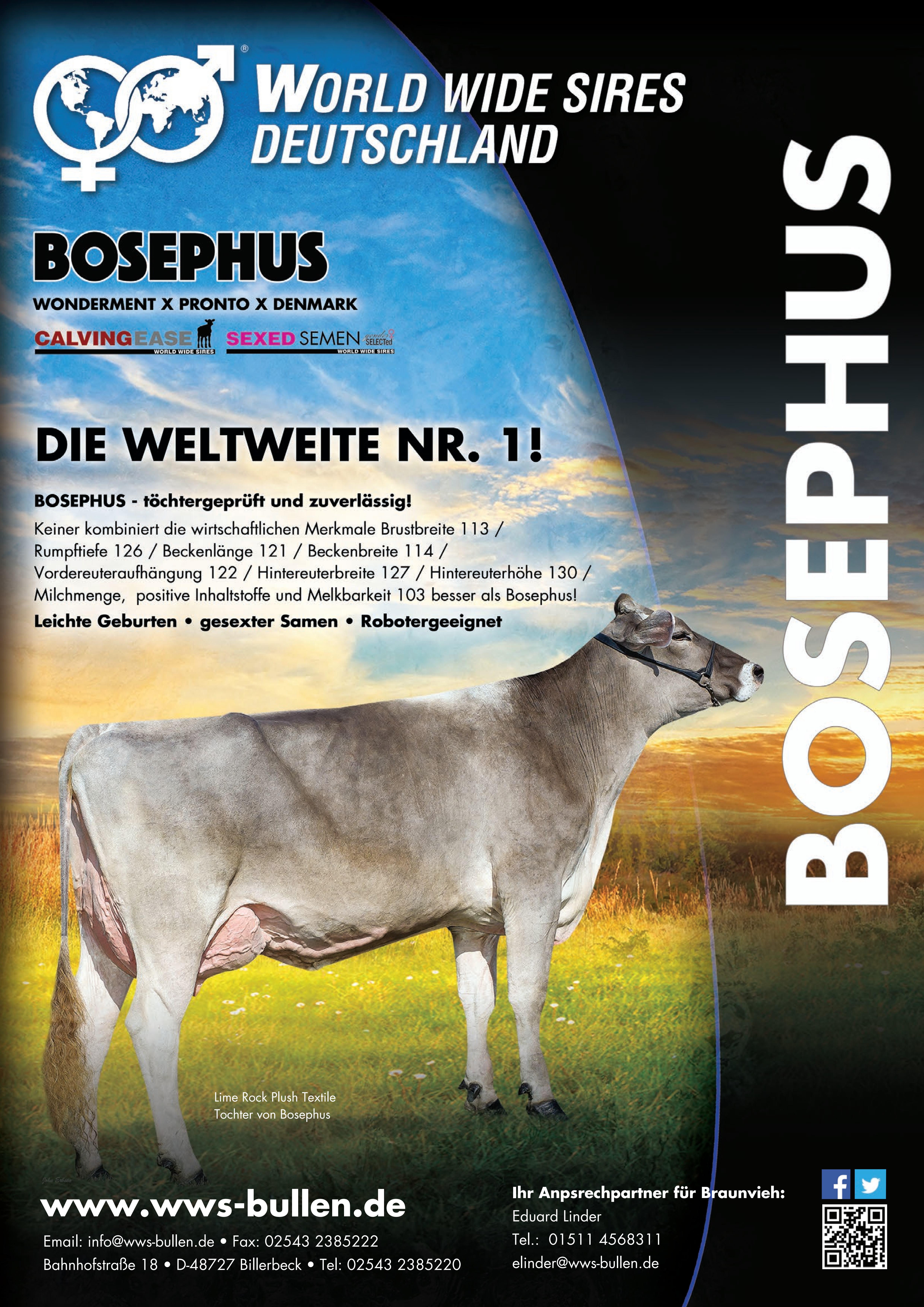 Bosephus - die weltweite Nr. 1!