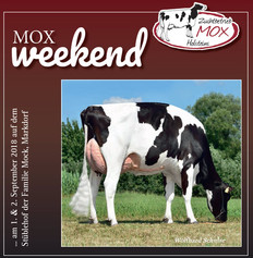 World Wide Sires beim MOX weekend!
