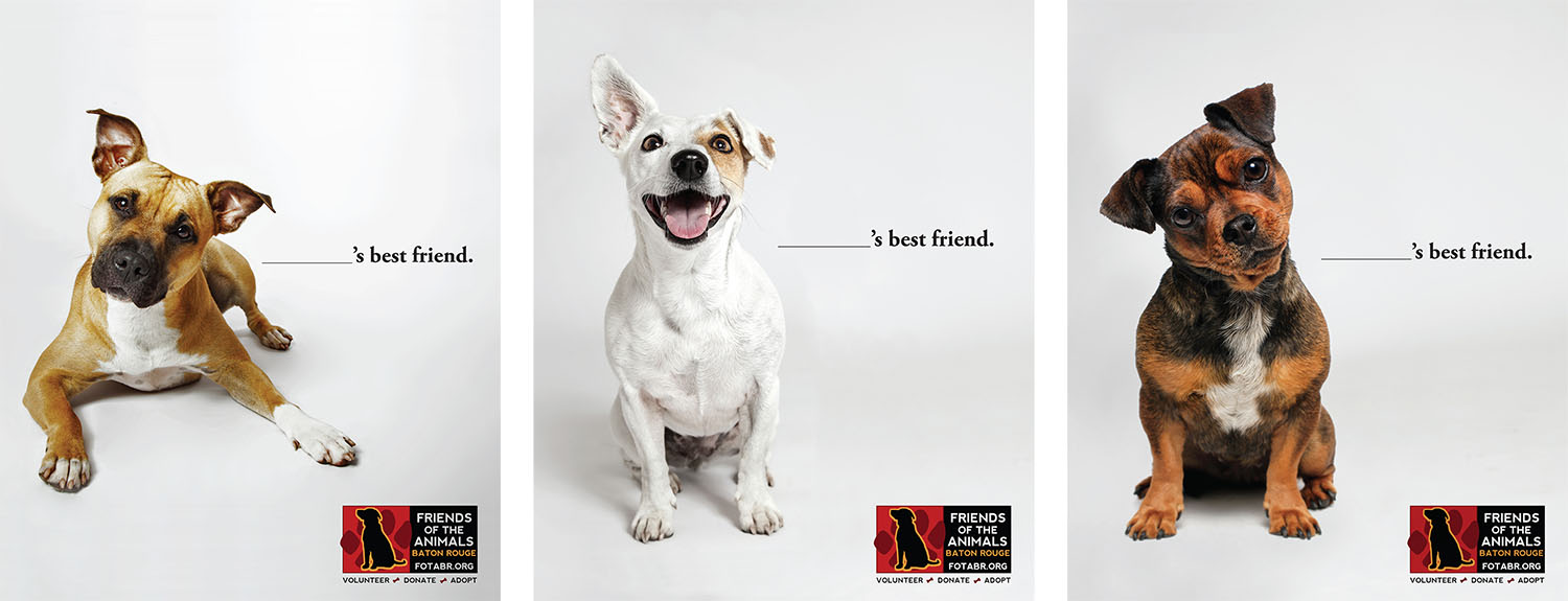 Friends of the Animals | Print Ads