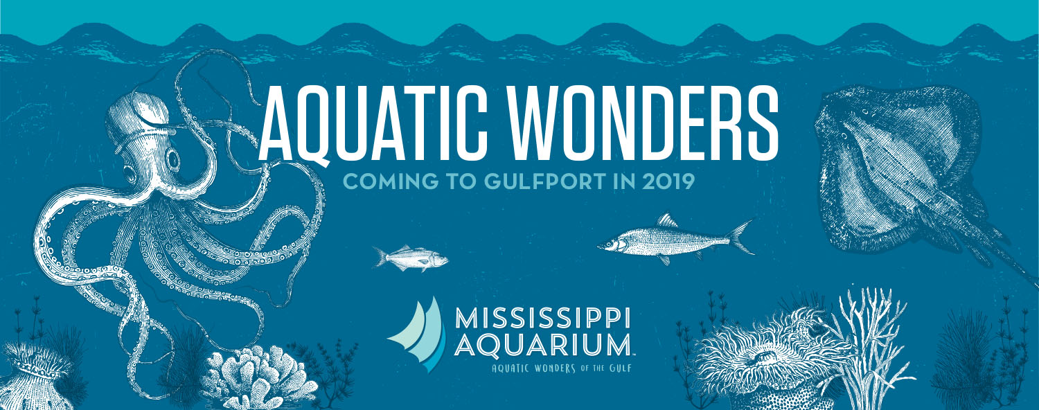 Mississippi Aquarium | Aquatic Wonders