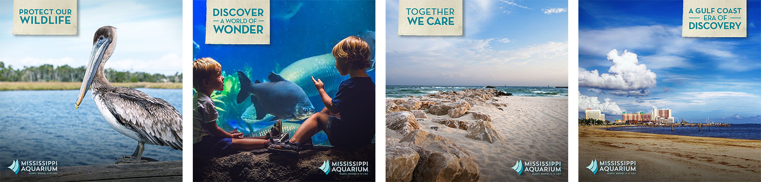 Mississippi Aquarium | Social Media