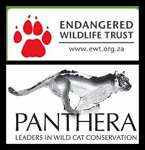 Endangered Wildlife Trust & Panthera