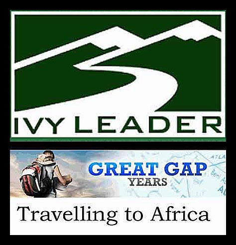 Ivy Leader and Great Gap Years