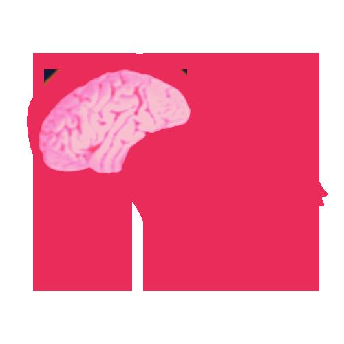 Cranio de chimpanze