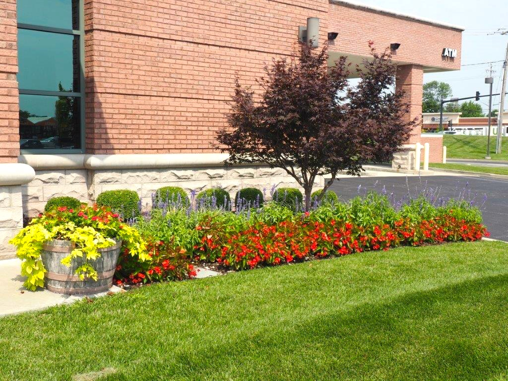 Commercial Landscaping Service & Design | Metro East Area St. Louis | CLS