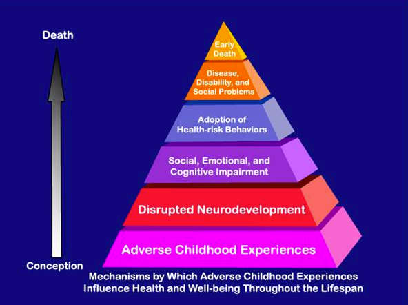 More On Adverse Developmental Impacts >> Oprah Brings Conversation About Adverse Childhood
