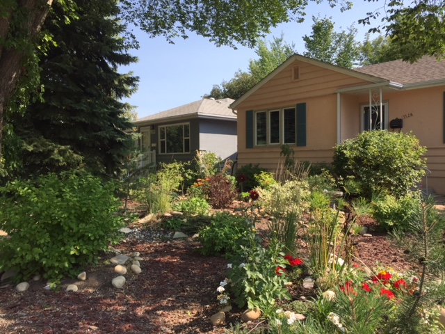 Xeriscaping and Low Maintenance Yards