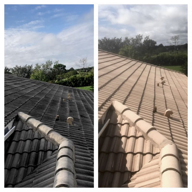 Before and after roof cleaning with soft washing process