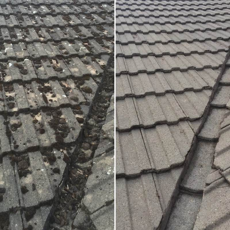 Before and after roof cleaning in The Woodlands TX