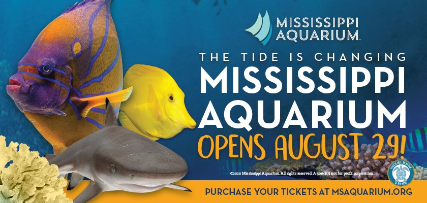 Mississippi Aquarium is opening in downtown Gulfport on August 29