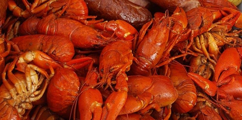 Tottenham Ploughman Crayfish Boil with Crayfish Bob