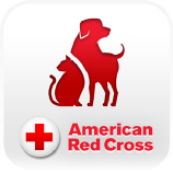 Red Cross Certification