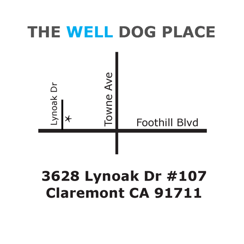 Map showing the location of The Well Dog Place
