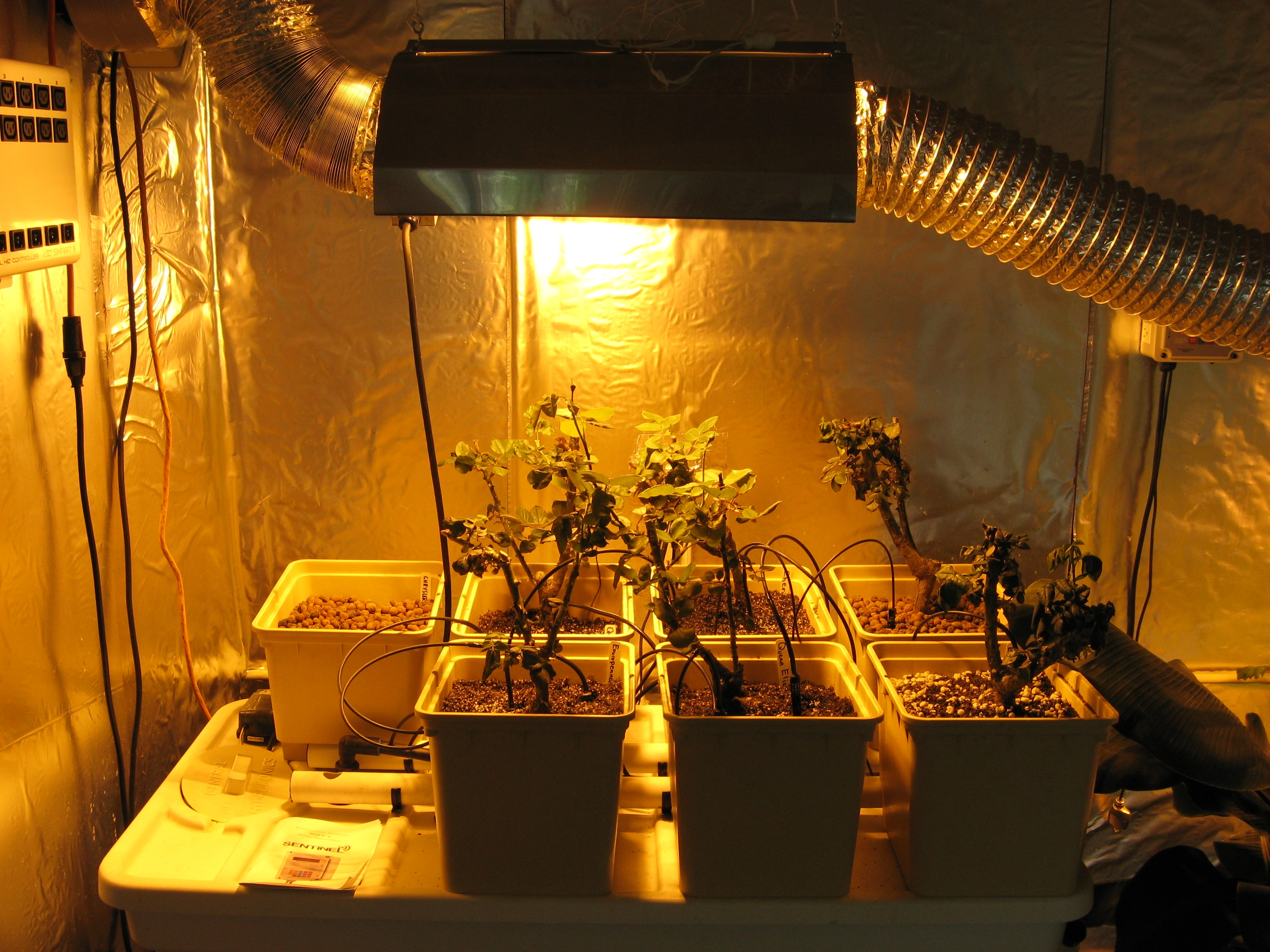 What Are The Main Types Of Grow Lights A Simple Guide