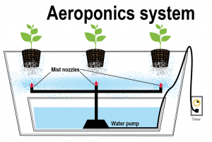 how aeroponics works