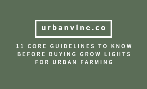 11 Core guidelines to know before buying grow lights for urban farming
