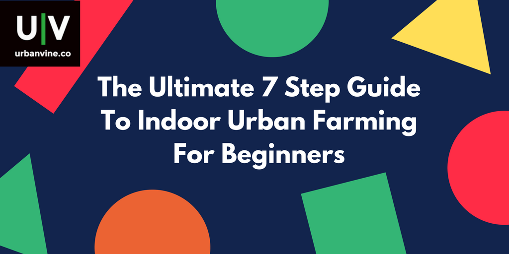 Ultimate 7 Step Guide To Indoor Urban Farming For Beginners