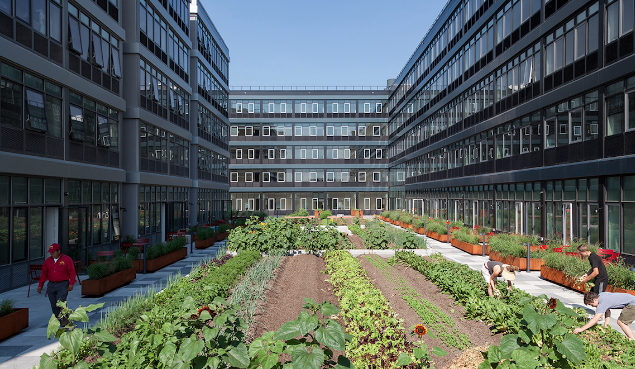 NYC's First Commercial Farm in Residential Development