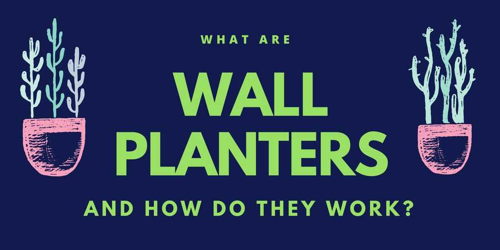What are wall planters, and how do they work?