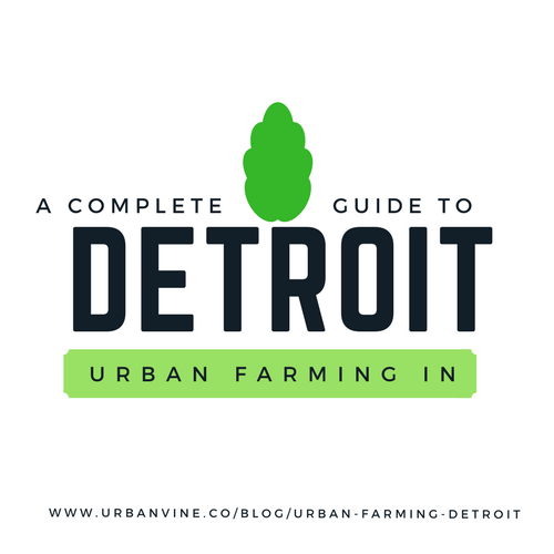 Complete Guide To Urban Farming In Detroit