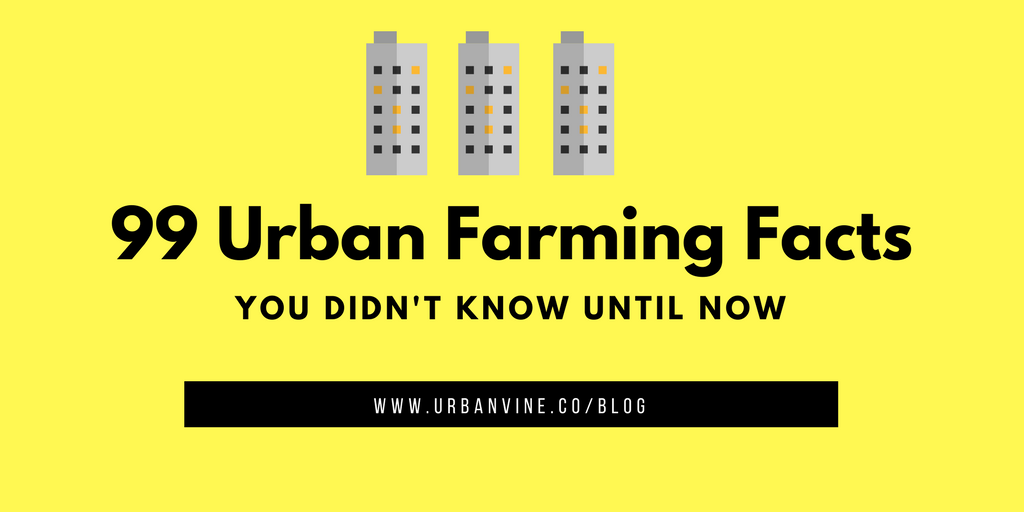 99 Urban Farming Facts you did not know
