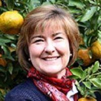 Helen Andrew Spare Harvest